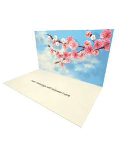 Send Flowers eCard and Online Greeting Card to your Friends and Family. Cherry Blossom Tree eCard